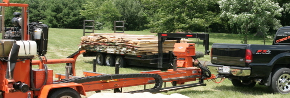 Wisconsin Urban Wood – Trees First  Wood Next